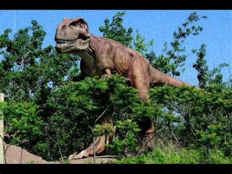 Giochi Di Dinosauri Volanti Quot Dinosauri In Carne Ed Ossa Quot All Oasi Wwf Cratere Degli