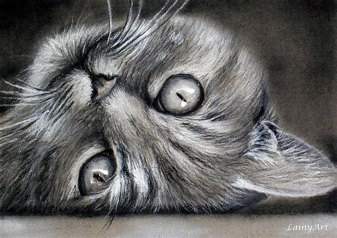 custom cat drawing   photo  realistic hand