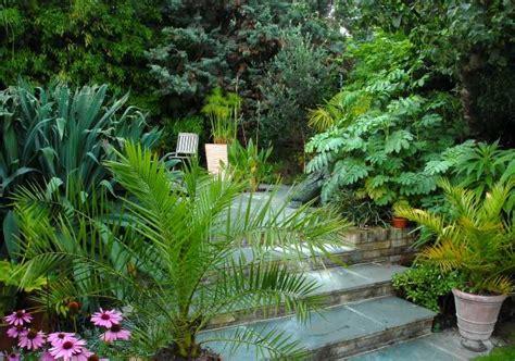 tropical patio exotic tropical patio