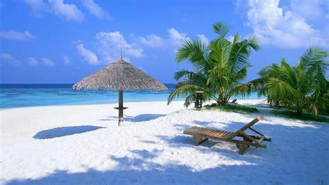 hd wallpaper beach azure ocean palm