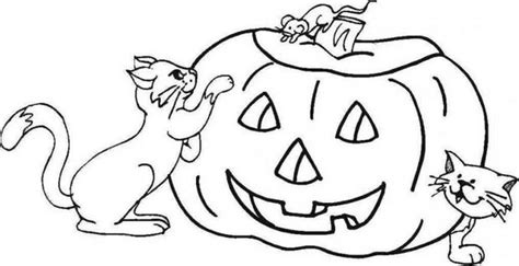 Enlightened Pumpkin And Cats Coloring Pages