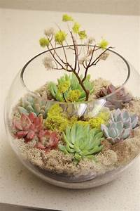 Picture Of Succulent Centerpieces For Your Recepton Table