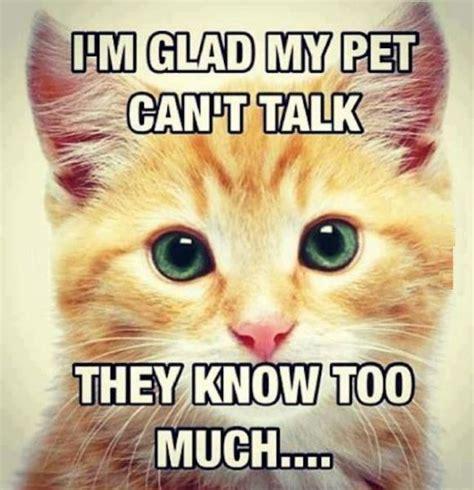 I'm Glad My Pet Can't Talk  Cat Humor