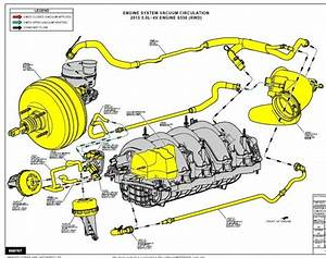 Coyote Engine Diagram