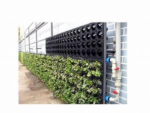Vertikal Garten System : green wall system living wall system vertical garden system world leading manufacturer and ~ Sanjose-hotels-ca.com Haus und Dekorationen