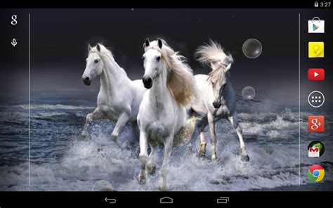 fond d 233 cran anim 233 chevaux applications android sur play