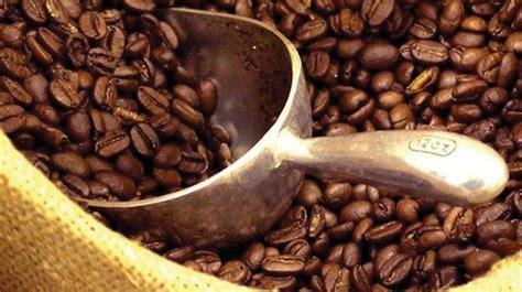베트남, 커피원두(로부스타)생산 비약적 증가예상 Industrial Coffee Maker K Cups Comedians In Cars Getting Tiffany Haddish Full Episodes David Letterman Joe Rogan Kristen Wiig Music Idubbbz