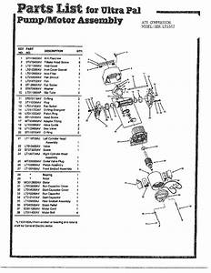 Pump  Motor Diagram  U0026 Parts List For Model Lt5502 Campbell