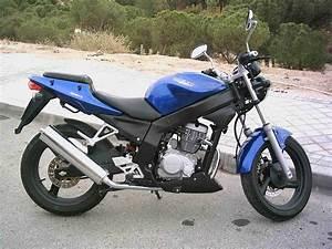 125 Daelim Roadwin : que opinais de las motos de 125cc en off topic miscel nea 4 8 ~ Gottalentnigeria.com Avis de Voitures