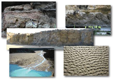 2807313272 sedimentologie facies et environnements objectifs
