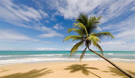 The Best Beaches & Activities in Samana, Dominican ...