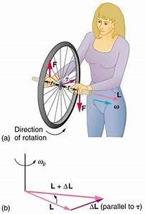 Gyroscopic Effects  Vector Aspects Of Angular Momentum