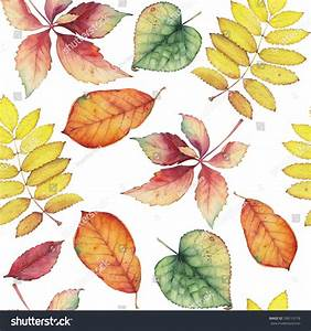 Seamless Pattern Hand Drawn Autumn Leaves Stock ...