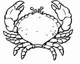 Crab Coloring Pages Printable Hermit Print Line Cute Results Popular Clipart Getcoloringpages Clipartmag Drawing Kidsuki sketch template