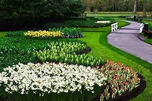 Tulpen Im Garten : tulpen arbeiten die niederlande im garten stockbild ~ A.2002-acura-tl-radio.info Haus und Dekorationen