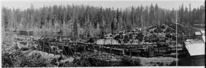 Redwood Photograph Prints. Coast Redwoods Photographs ...