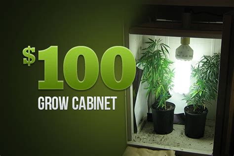 small grow rooms quotes