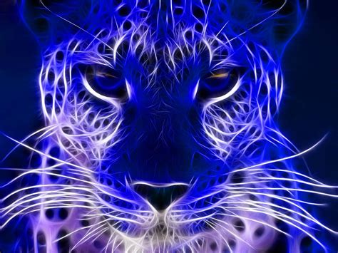 electric blue wallpapers wallpaper cave