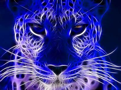 Electric Wallpapers Cheetah Cool Background Neon Purple