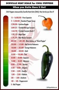 The Scoville Scale Chili Pepper Madness