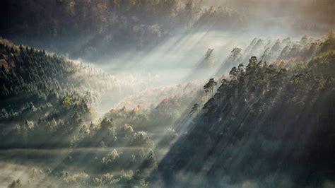 Aesthetic Nature Wallpaper by Computer Aesthetic Wallpaper Hd Ololoshenka Forest