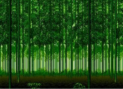 Bamboo Forest Ryu Zero Sub