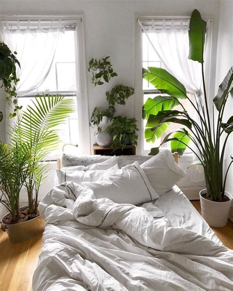 Bedroom Inspiration Plants by House Plants And Cozy White Sheets Bedroom Home Goals