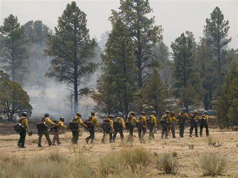 images  usfs wild land fire fighters