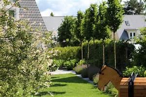 Moderne garten mit hainbuche igelscoutinfo for Katzennetz balkon mit scout garden
