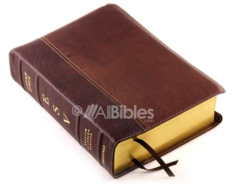 Esv Study Bible Cowhide by Bibles Buy Discount Bibles Bible Covers And More At