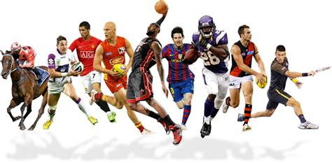 Sports Groups, Business Groups, Tourist Groups