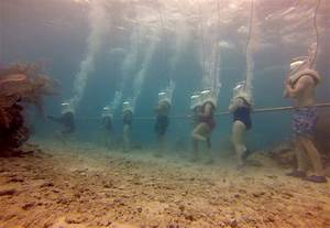 A Quick Guide To Sea Trekking On The Ocean Floor
