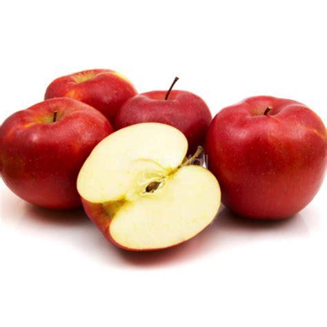 apple  kilo fresh fruits