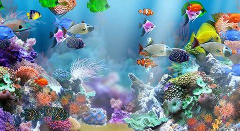 fish tank background printable   aquarium