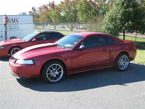 1999 Ford Mustang Cobra Svt Related Infomation