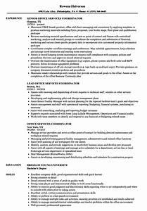 Computer Skills In Resume Sample Office Services Coordinator Resume Samples Velvet Jobs