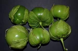 Image Gallery tomate verde