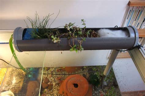 filtre pour aquarium 20l gouttiere pour terrarium ou aquarium avec plante filtrante diy filtre naturel les