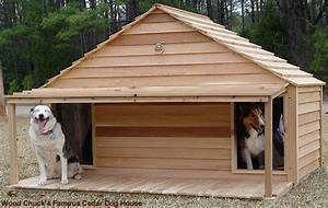 click image above for larger view extra large cedar With large dog house for multiple dogs