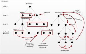 Bi Future Blog  Ssas  Dimension  Hierarchies  Levels  Members  Children  Parents  Etc