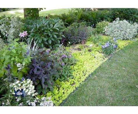 flower garden ideas mn interior design