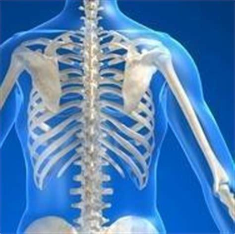dolore gabbia toracica sinistra dolore dorsale intercostale scapolare respirando petto
