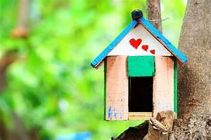 Casa Amore De : historias de amor entre vecinos ~ Markanthonyermac.com Haus und Dekorationen