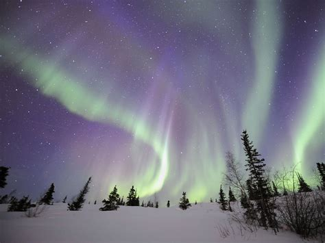 northern lights tours canada northwest territories canada travel youtube