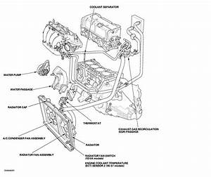 99 Honda Accord Fuse Diagram