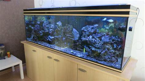 aquarium eau de mer herault
