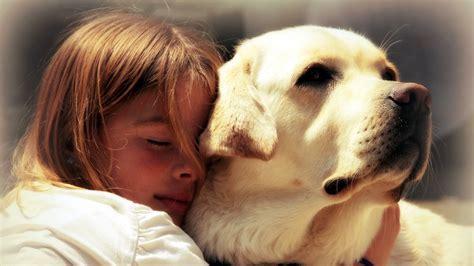 Do dogs like hugs? - DoDogs