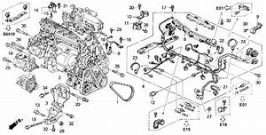 Can I Swap Obd1 And Obd2 Accord Engine Harnesses