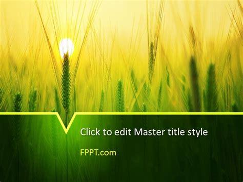 wheat powerpoint templates