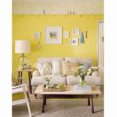Primrose Yellow Colour Decorate Wall Soft Decorating